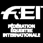 fei_logo_square